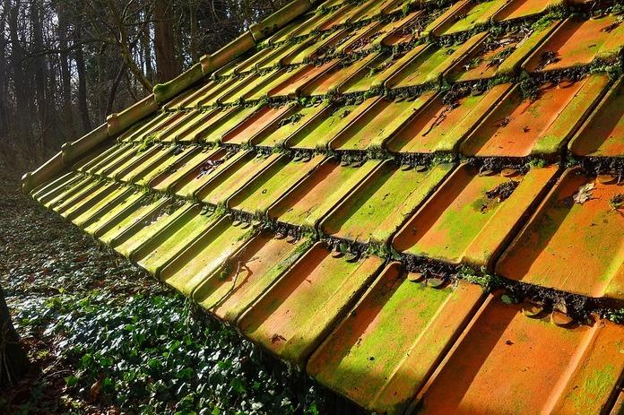crédit rénovation de toiture