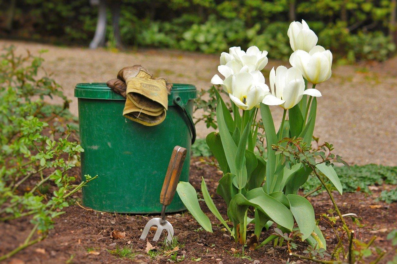 outils de jardin Parkside